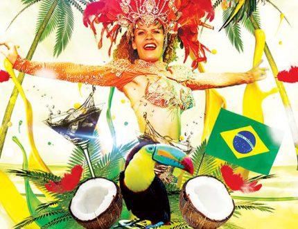 MARCHE DE NOEL DE BRUXELLES ET SHOW BRAZIL